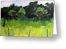 Clusters Of Black-eyed Susans Greeting Card by Charlie Spear