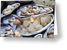 Coastal Beach Art Prints Agates Shells Acorn Greeting Card by Baslee Troutman