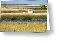 Coastal Marshlands with Old Fishing Boat Greeting Card by Bill Swindaman