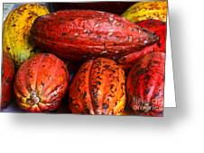 Cocoa Pods Greeting Card by Pravine Chester