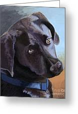 Coco's Portrait Greeting Card by Margaret Sarah Pardy