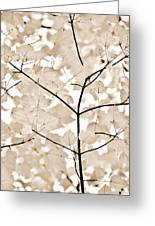Coffee Brown Leaves Melody Greeting Card by Jennie Marie Schell