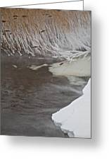 Cold Fills The Void Greeting Card by Odd Jeppesen