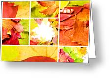 Collage Colorful Greeting Card by Boon Mee