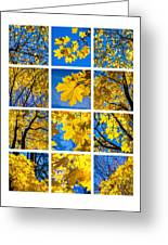 Collage October Blues Greeting Card by Alexander Senin
