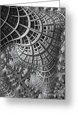 Colony II Greeting Card by John Edwards