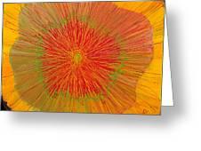Color Burst 4 Greeting Card by Anna Skaradzinska