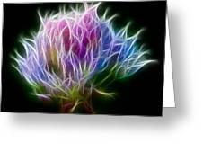 Color Burst Greeting Card by Adam Romanowicz