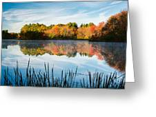 Color On Grist Millpond Greeting Card by Michael Blanchette