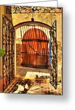Colors Of Saint Thomas 2 Greeting Card by Mel Steinhauer