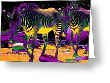 Colourful Zebras  Greeting Card by Aidan Moran