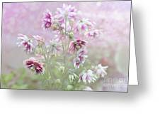 Columbine Beauty Greeting Card by Elaine Manley
