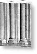 Columns At The University Of Southern California Greeting Card by University Icons