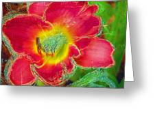 Coming To Life Greeting Card by Anne-Elizabeth Whiteway