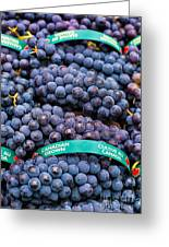 Concord Grapes Greeting Card by Mary  Smyth