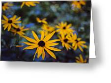 Cone Flowers Greeting Card by Marcio Faustino