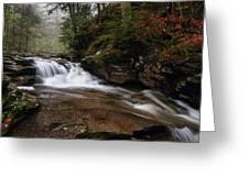 Conestoga Falls Greeting Card by Mike Farslow