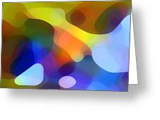 Cool Dappled Light Greeting Card by Amy Vangsgard