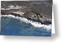 Cooled Lava Fields By Pacific Ocean Greeting Card by Sami Sarkis