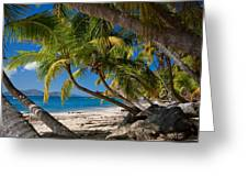 Cooper Island Greeting Card by Adam Romanowicz