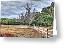 Coosaw - Cloudy Day Greeting Card by Scott Hansen