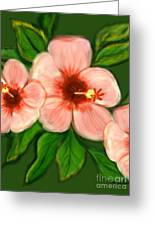 Coral Hibiscus  Greeting Card by Christine Fournier