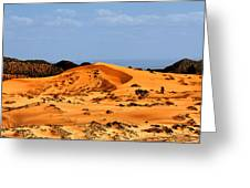 Coral Pink Sand Dunes Utah Greeting Card by Christine Till