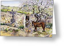 Corner Of Lucainena Greeting Card by Margaret Merry