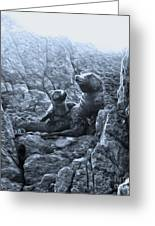 Corona Del Mar Seals Statue - Black And White Greeting Card by Gregory Dyer