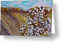 Cotton Fields In Autumn Greeting Card by Eloise Schneider