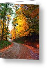 Country Autumn Gravel Road Greeting Card by Julie Dant