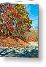 Country Curves And Vultures Greeting Card by Steve Harrington