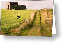 Country Lane Greeting Card by Amanda And Christopher Elwell
