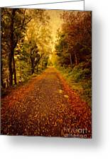 Country Lane V2 Greeting Card by Adrian Evans