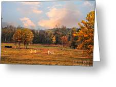 Country Morning Greeting Card by Jai Johnson
