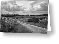 Country Road Greeting Card by Chris Scroggins