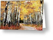 Country Roads Greeting Card by Steven Reed