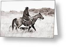 Cowboy And Dogs Greeting Card by Cindy Singleton