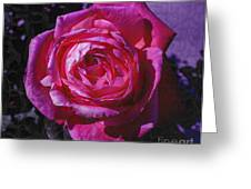 Crackled Fuchsia Rose Greeting Card by Janice Rae Pariza
