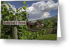 Crane Creek Vineyard Greeting Card by Debra and Dave Vanderlaan