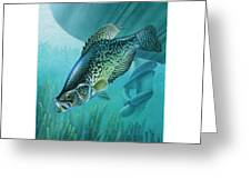 Crappie And Boat Greeting Card by JQ Licensing