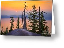 Crater Lake Trees Greeting Card by Inge Johnsson