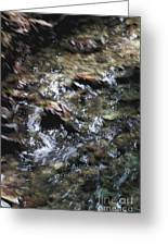 Creek Bed Greeting Card by William Norton