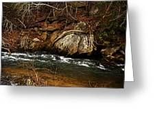 creek Greeting Card by Mario Celzner