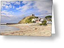 Criccieth Castle North Wales Greeting Card by Colin and Linda McKie
