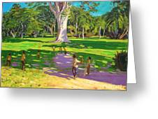 Cricket Match St George Granada Greeting Card by Andrew Macara