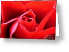 Crimson Greeting Card by Patti Whitten