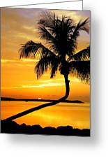 Crooked Palm Greeting Card by Karen Wiles