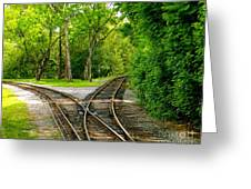 Crossing The Lines Greeting Card by Joy Hardee