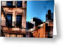 Up On The Roof Greeting Card by Miriam Danar